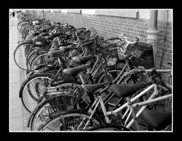 Bicycles by actress