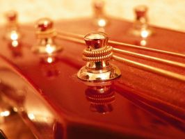 Guitar by iJustRodeYourBicycle