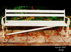 Broken bench by niwaj