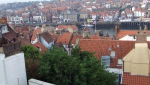 Whitby Rooftops (2) by PaulineMoss