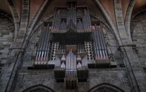 Organ in the Cathedral of Bamberg by Manshonyagger