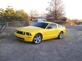 Yellow Mustang by wastemanagementdude