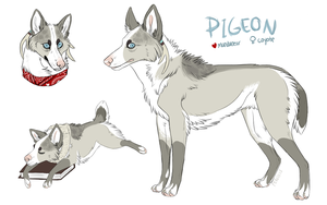 pigeon 2013 by relaxcupcake