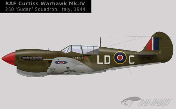 Warhawk IV FX781 250 Sqn RAF by Bad-Rabbit-Design