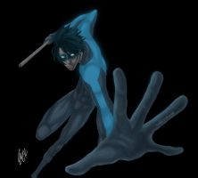 Nightwing by doodleslave