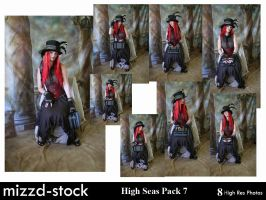 Steam Traveller Pack 7 by mizzd-stock