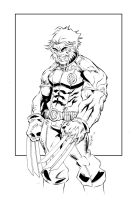 Logan-Wolverine Inks by devgear