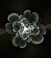 Fractal Flower by Judan