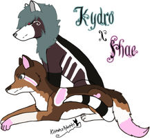 Kydro x Shae Limited Breeding - Closed by KittehzAdopts