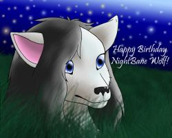 Happy Birthday NightBane Wolf by RadioactiveBirds