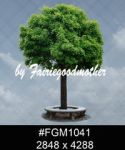 Fgm 1041 by FairieGoodMother