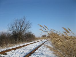 Railway under snow by Linden-Oak