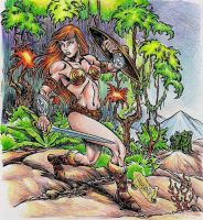 Battleground Teela by danbrenus