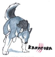 Kanatora by BlackWingedWolf