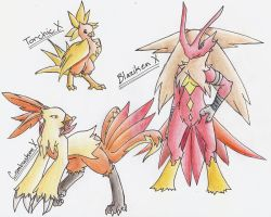 Torchic Evolution Series X by CelestialTentails