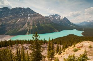 Peyto Lake by gnohz