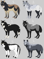 CANINE WOLF AUCTION by i-Nath