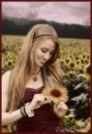 sunflower field by mandee-was-here