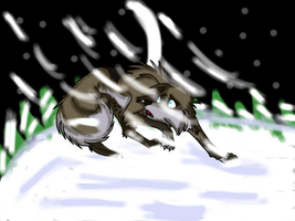 Wolpy in the snow by Niinetails