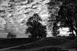 Our Land by rici66