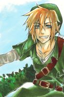 Link by Laovaan