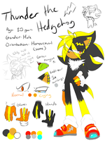 .:Ref:. Thunder the Hedgehog by SilverfanNumberONE