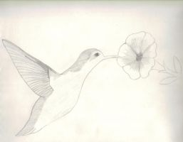 humming bird nd flower by scarcrow27