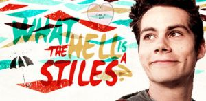 What the Hell is a Stiles? by Vexa-Leonhart