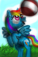 Rainbow Dash Breaks the Record! by easeldoodle