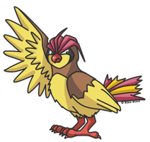 017 Pidgeotto by reika-world