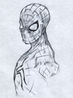 Spidey... by SaintYak