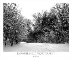 The Winter Road by emanuelmelo