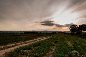 Landscapes.. by prettyfaceyay