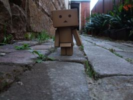 Danbo on the bricked path by VeritaDea