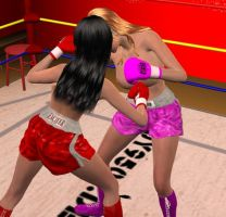 Nicole vs Lilly 008 by chuy9502