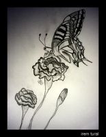 Butterfly -II- by iremtural