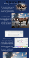 The Tutorial Horse- 7. Markings and recolouring by Dark-Oak-Trails