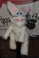 Magic Bunny Puppet by PuppetSmith Arts by kingart4