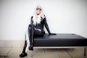 Black Cat by Torremitsu