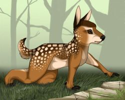 Baby Deer by Ronto