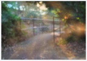 Along life's path by ElevenOrchids