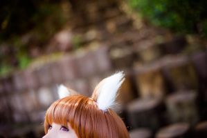 HORO the wise wolf by MadeinPlute