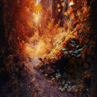 love changes everything by ildiko-neer