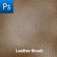Leather Brush by cwdigital