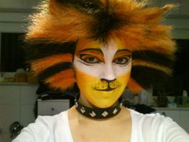 Mungojerrie make up by NigruStea