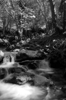 B and W River flow by Abylone