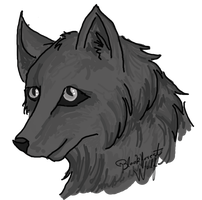 Black Wolfeh by Blesses
