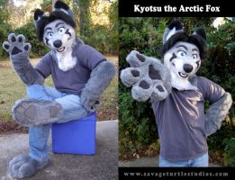 Kyotsu the Arctic Fox by JakeJynx