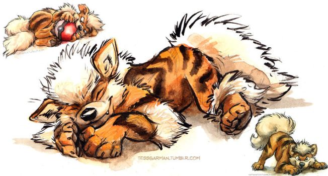 Arcanine and Growlithe for SALE! by kenket