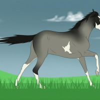 Nevaeh Running Free (Animation) by Equinera